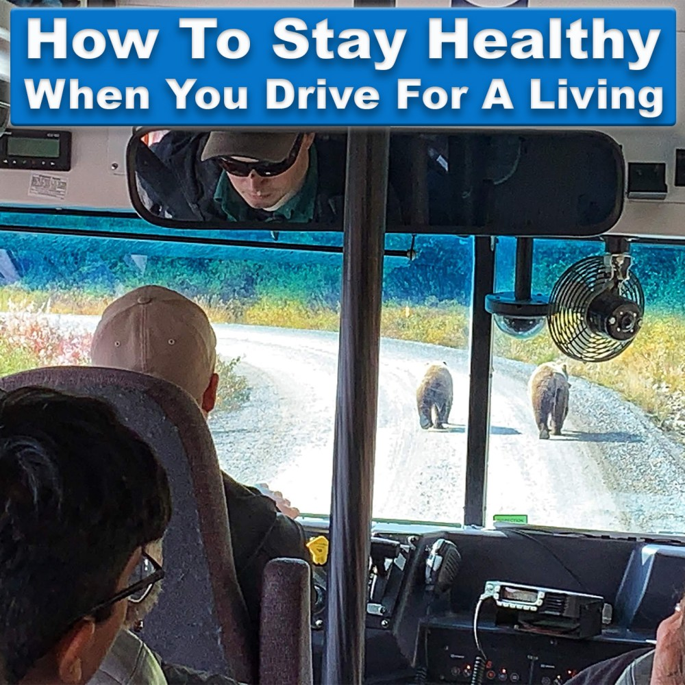 How To Stay Healthy When You Drive For A Living - driving in Denali National park