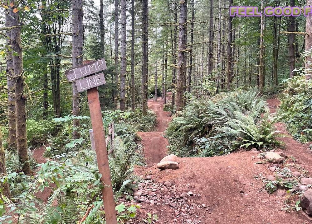 Feel Good Friday - Mountain Bike Coaching - Carbs - Multi-Vitamin jumping mountain bikes