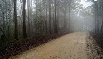 D'Aguilar National Park, Brisbane
