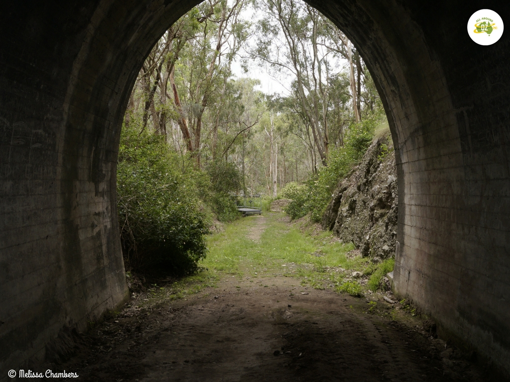 Muntapa Tunnel is an easy drive from Crows Nest