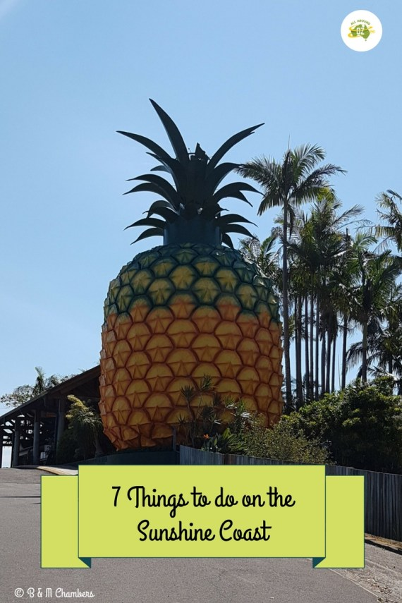 Things to do on the Sunshine Coast - Visit the Big Pineapple
