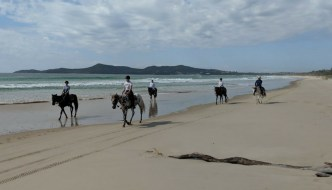 Beach Horse Riding at Noosa North Shore