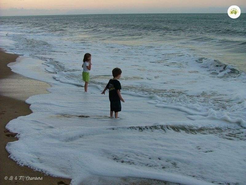 Kids playing in the surf - Ellis Beach, Cairns