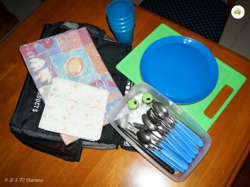 Day Trip Essentials - Picnic Bag