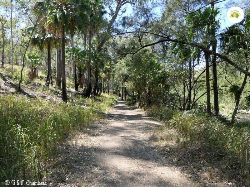 Carnarvon Gorge Nature Trail