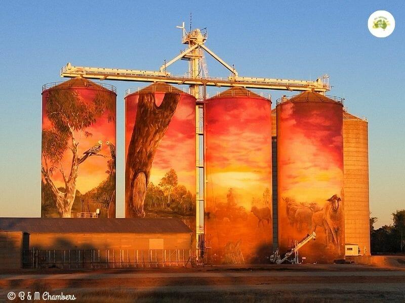 Exploring Queenslands Southern Outback - Thallon Silos