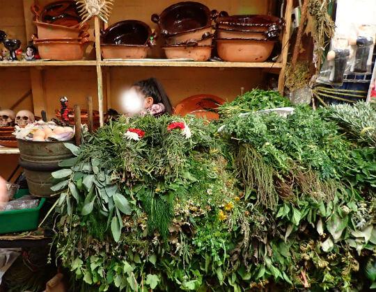 ソノラ市場の薬草