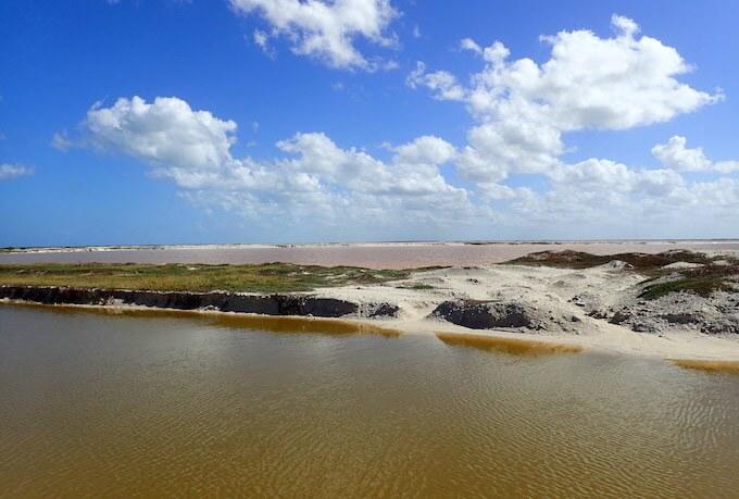 ピンクレイク(ピンクラグーン)の近くの干潟(茶色いピンクレイク)