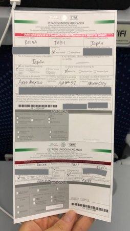 メキシコの入国審査用の紙
