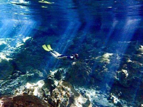 カンクンのセノーテ(水中写真)