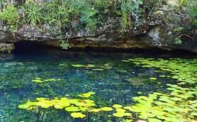 グランセノーテ(透明な泉)2