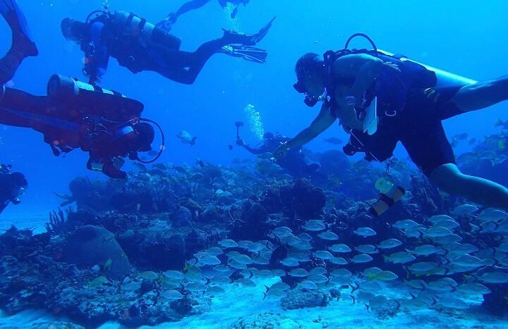 コスメル島でのダイビング(4人のダイバー)