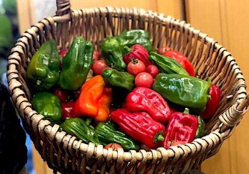 サルサの材料は夏野菜
