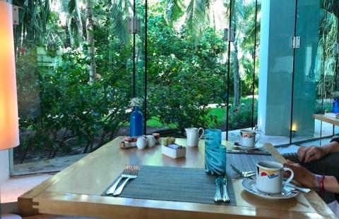 ライブアクアでジャングルを見ながら朝食