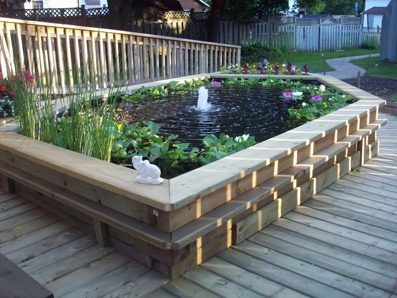 Raised Garden Fish Ponds   Backyard Design Ideas on Above Ground Ponds Ideas id=90575