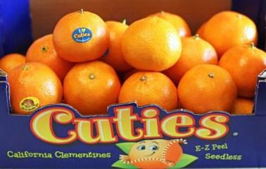 calories in a tangerine cutie