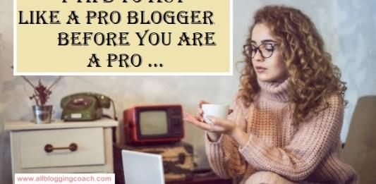 pro blogger