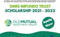 OMIG Imfundo Trust Scholarship