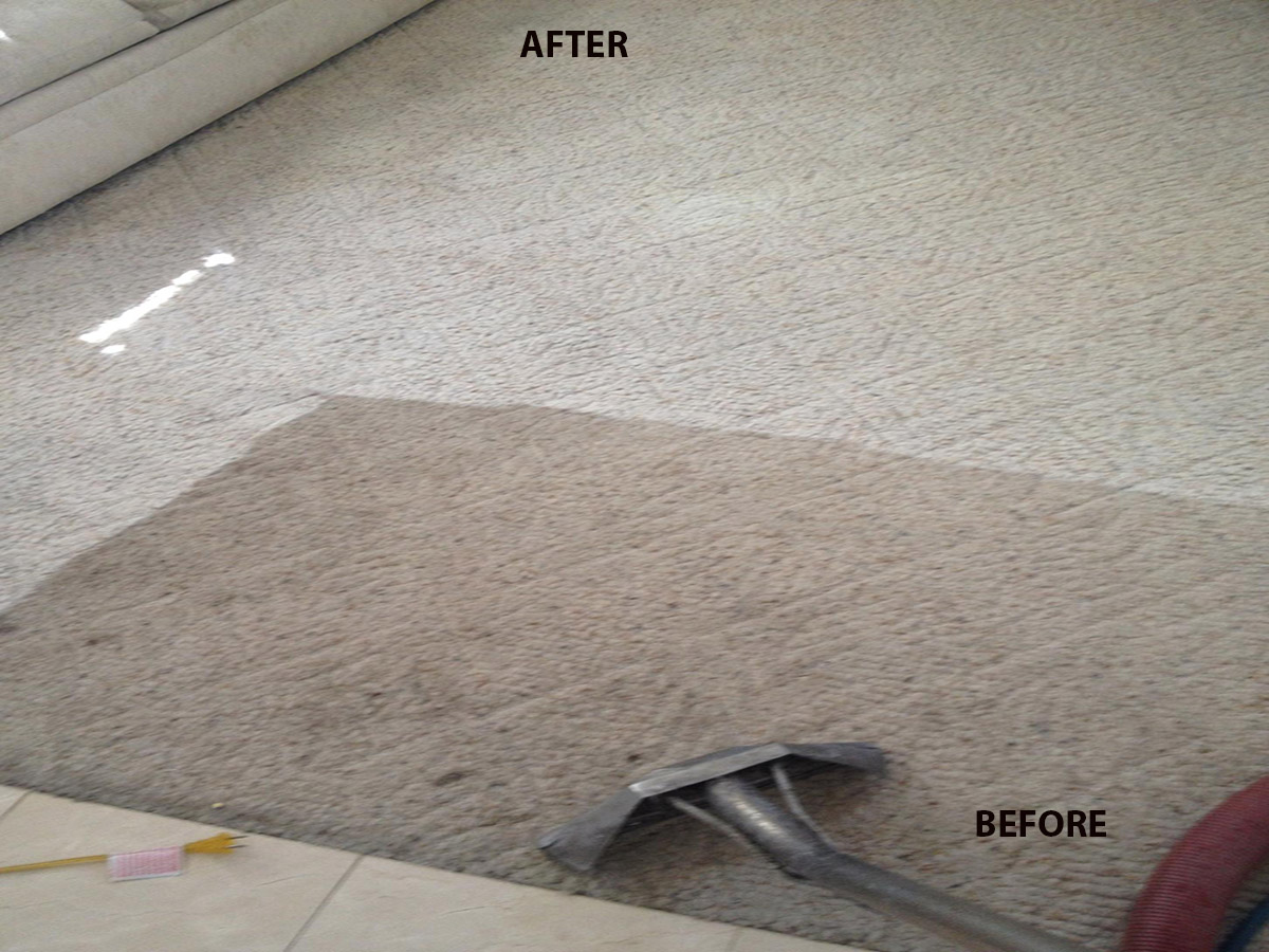 tile cleaning all green carpet cleaning