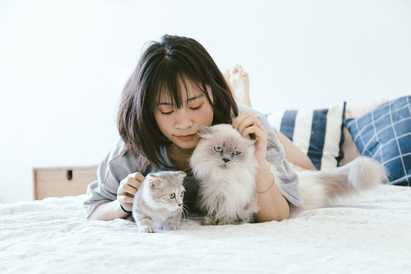 Why Cats Make The Perfect Pet - Medical Benefits