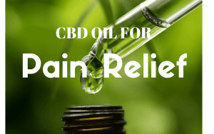 the best cbd oil for pain relief