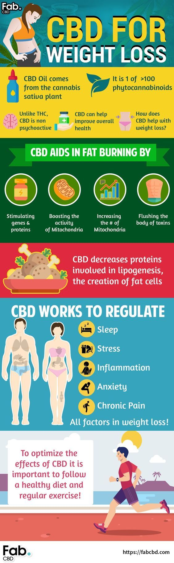 Best CBD Oil For Weight Loss: A Natural Appetite Suppressant