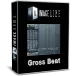 Image-Line-Gross-Beat-Full-version-Free-download