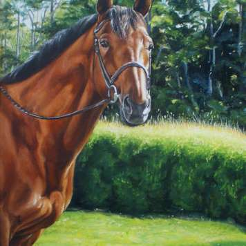elizabeth-hill-painting-horse