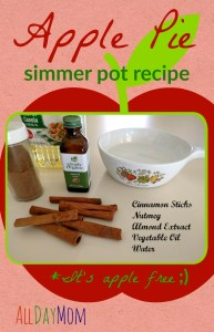 Apple Pie Simmer Pot Recipe: Natural Home Fragrance!