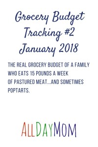 What's Your Grocery Budget? Final Spending in January! Grocery Budget Tracking #2 Jan 16–31 2018