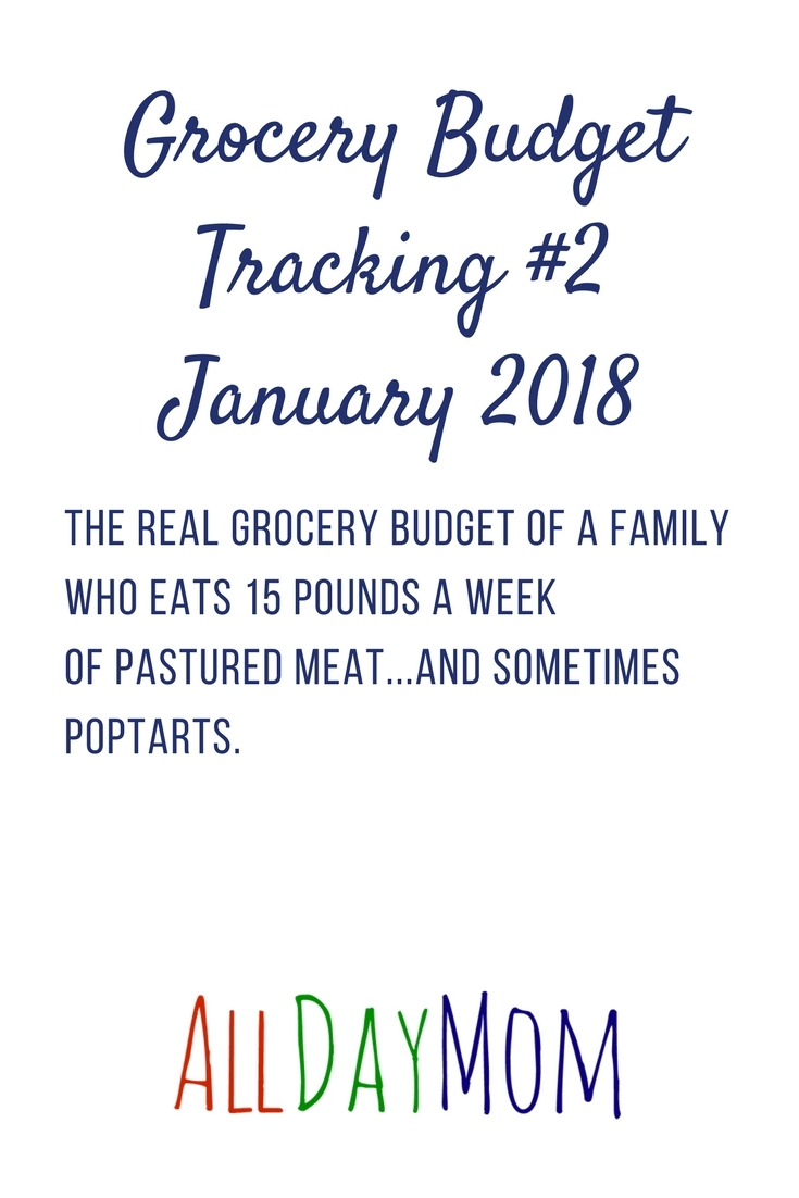 Real grocery budget of a family who eats 15 pounds a week of pastured meat...and sometimes Poptarts. haha! Can you feed your family a clean eating diet and still come in under your grocery budget? Here is my grocery budget tracking for each month in 2018—will I stay under my $600 a month grocery budget?