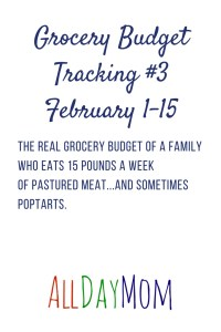 Grocery Budget Tracking 2018: February 1–15. It doesn't look good.