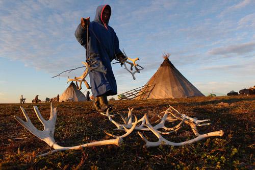 Полуостров Ямал, олени и их люди. Фотопутешествие Георгия Шпикалова