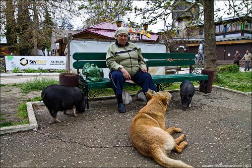 Детский парк Лукоморье в Севастополе. В гостях у сказки