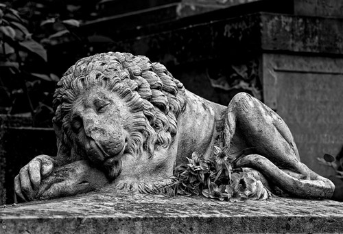 Лычаковское кладбище во Львове. Красивая прогулка с фотографом Олегом Григорьевым