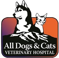 Veterinarian in Glenwood Springs, CO | All Dogs and Cats ...