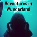 Adventures in Wunderland