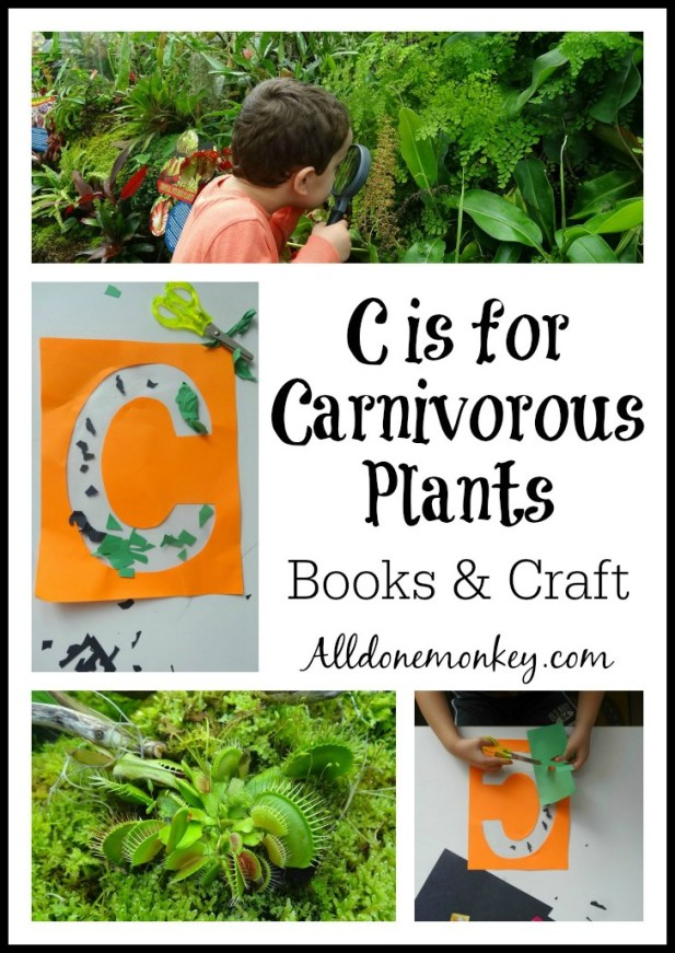 C is for Carnivorous Plants - 31 Days of ABC | Alldonemonkey.com