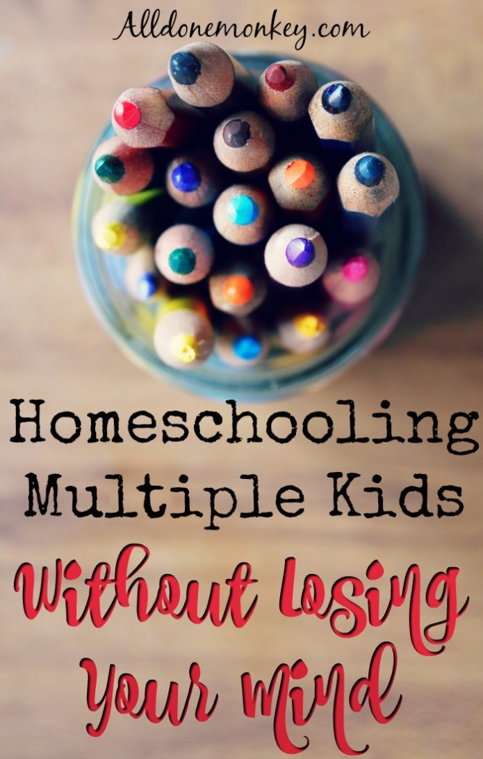Homeschooling Multiple Kids Without Losing Your Mind | Alldonemonkey.com