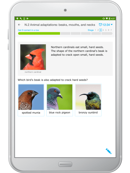 IXL review | Educational Resources to Keep Learning Going All Year