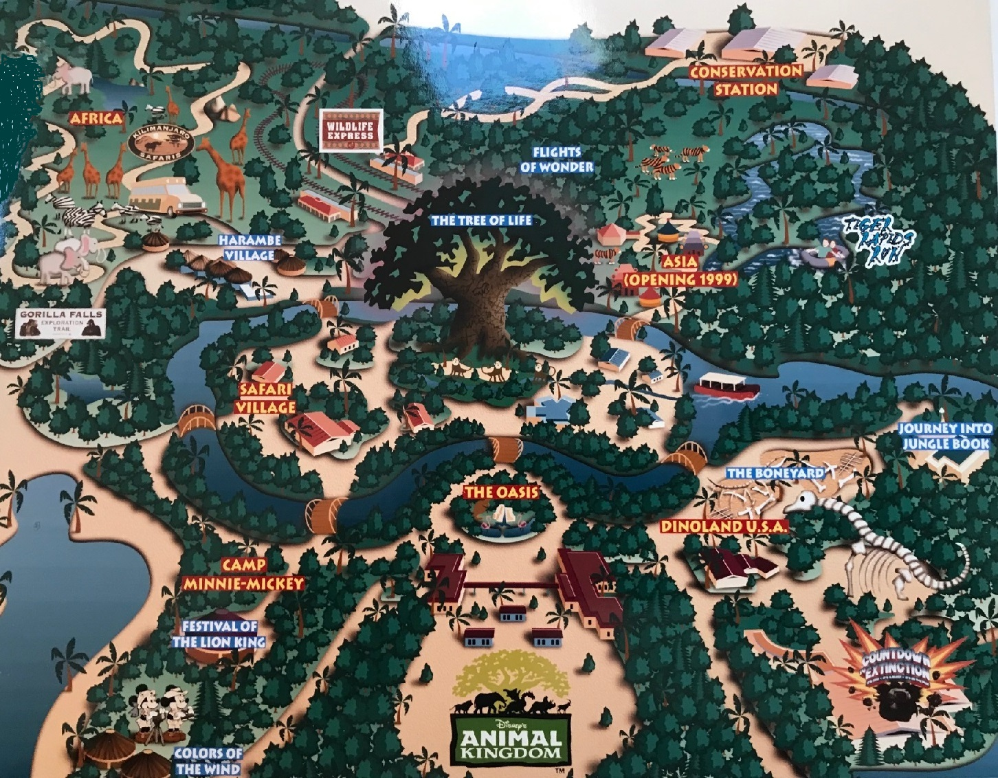 Since Opening In Animal Kingdom Has Seen Some Wild