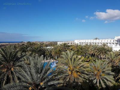 Blick von unserer Terrasse im Hotel RIU Palace Maspalomas