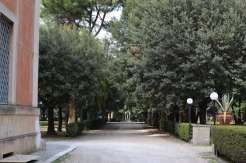 Walking past the courtyard and continuing along the tree-lined road