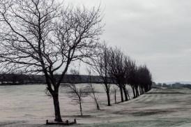 norland-golf-course-winter-scene