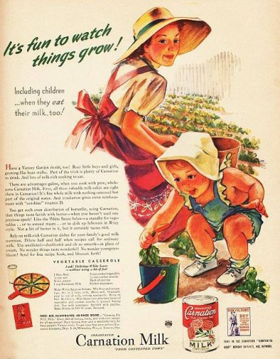1945 Carnation Milk Content Ad example