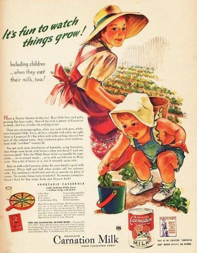 1945 Carnation Milk Content Ad example