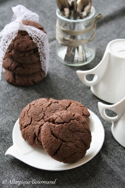 cookies au chocolat sans gluten sans lait sans oeufs