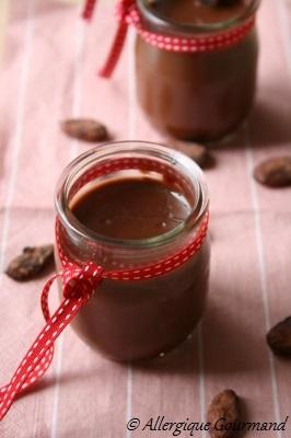 crème au chocolat sans gluten sans lait sans oeufs