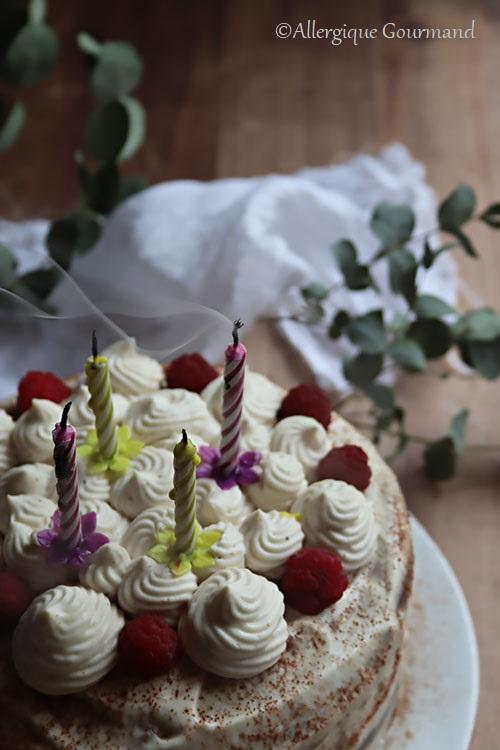 layer cake chocolat crème pralinée