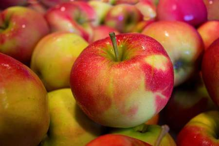 apple allergy symptoms